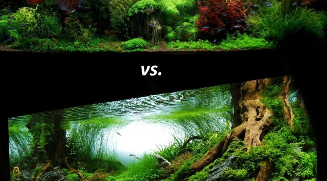 Estilo Holandês vs. Estilo Nature Aquarium